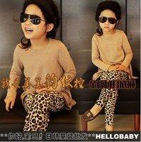 KZ-503,free shipping 5 pcs/lot 2012 new style cotton baby leggings fashion girl's leopard tight pants kid's trouser wholesale