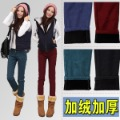 Free shipping- 2012 winter new arrival candy color jeans trousers female thickening plus velvet slim boot cut jeans