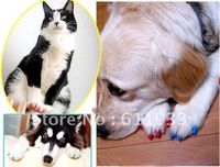 200pcs/lot different Size different color Pet Cat Soft Paw Nail Caps Claw Control with Glue pet Silicon Nail Protector