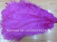 wholesale FREE SHIPPING 200pcs/lot 10-12''Ostrich Feather Plume