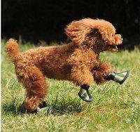Товары для груминга собак 111111 ( DSSA-001