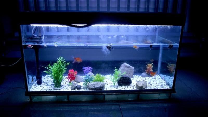 Крышка для аквариума со светодиодами