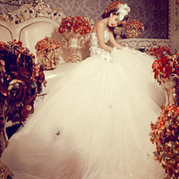 Princess Dresses 2013 Luxury Royal Lace Princess Tube Top Bride Mermaid Train Wedding Dress  Dresses 2012 Fashion 8706