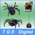 Free Shipping! RC Radio Remote Control Simulated Black Widow Spider Black(27MHz)