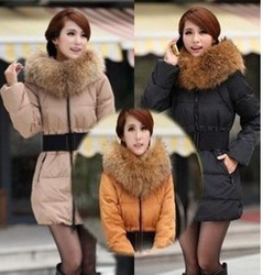 Wholesale New 2012 Casual Women's Winter Coats Cotton-padded Clothes Slim Outwear Warm and Fashion Women down jacket(China (Mainland))
