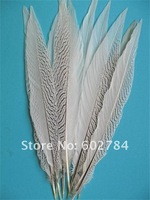 100PCS 10-12 inches 25-30cm carnival decoration Silver pheasant feather silver feather Free Shipping