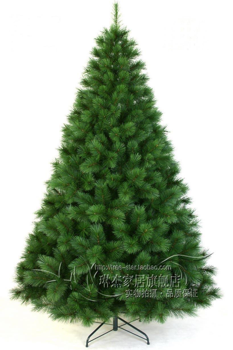 Cartoon Pine Tree 210cm pine tree christmas