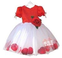 Платье для девочек 2012 girls princess skirt