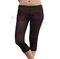 Belly dance bottoms whole gauze quality legging all-match chromophous soft and comfortable
