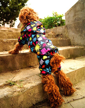 Pet dog raincoat satsuma large dog raincoat clothes