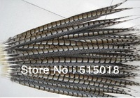 "Wholesale 50pcs/lot 36-40"" 90-100cm Black Pheasant Feather Plume performance Plume"
