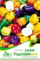 5 Pack 50+ Seeds 5 Color Yellow Puple Red Green White Mix Sweet Bell Pepper Seeds C024