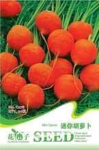 popular seeds carrot