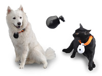 free shipping New mini USB PETS EYE VIEW Digital dog cat pet Camera for dogs Clip-On Collar Video Pet Camera