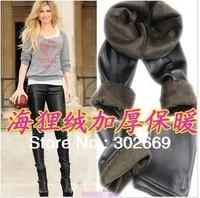 New Arrival Large size women's Leggings imitation leather elastic  tight pants 5pcs/lot  free shipping