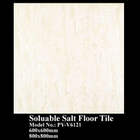 soluable salt floor tile, porcelain tile PY-V6121