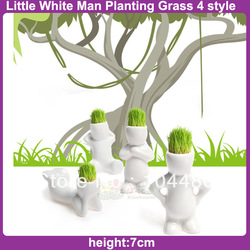 DIY Cultivation Bonsai Eco Desk Garden Decoration Plant Little White Man Planting Magic Grass 4 pcs children gift free shipping(China (Mainland))