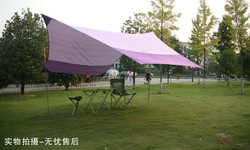 Moss tentorial silver sunscreen 420 350cm car tent tentorial awning(China (Mainland))