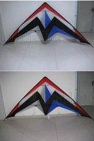 "Top Grade Huge 118""  Dual Line Kite Carbon Rod+tool+tails Outdoor Sport Gift 3m 2 Line LK015 RTF"