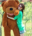 Free shipping,3 colours for choose (80cm) Sleeping Teddy Bear toy ,plush toy/bear toy/chrismas