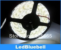 Free Shipping 5M 5050 SMD LED Strip Light 300 leds White waterproof+Free Gift Connector