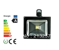 1pcs 10 W induction lamp LED flood light outdoor lamp monitoring security shoot the light