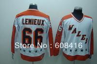 Wholesale Hockey jerseys Men's Cheap jerseys Pittsburgh Penguins #66 Mario Lemieux Mitchell&Ness Hockey jerseys size48-56