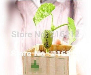 Magic Growing Message Beans /Seeds ,magic bean,English Magic Bean,Green Home Decoration(China (Mainland))