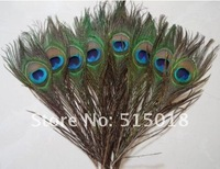 Wholesale New 50pcs Real Natural Peacock Feathers about 10-12 Inches