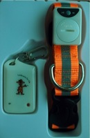 2012 new LED pet collar with anti-lost  with LED light  wholesale