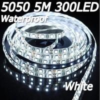 Free Shipping! 5M 300 LED 5050 SMD White Waterproof Flexible Light Strip 60 LEDS/Meter 12V