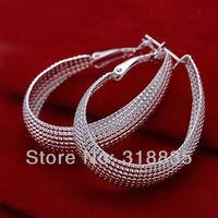 LQ-E064 Free Shipping 925 silver  wholesale fashion jewelry earring 925 silver earrings boza kgga sxpa