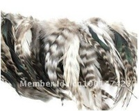 HOT! Fashion 100pcs/lot Grizzly Rooster Feather Hair Extensions 6-8inch
