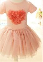 5pcs/lot high quality 2013 new girls Love flowers dresses girl's princess TUTU dress Corsage pink blue free shipping