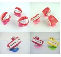 Spring/chain jumping teeth in four - style random!