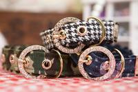 NEW Top-quality Retail Pet Collar,Dog Collar,Pet Accessory,Fashion