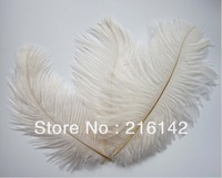 FREE SHIPPING Wholesale 100pcs/lot  WHITE 5-7inch Ostrich Feather Plumes,Wedding Centerpieces
