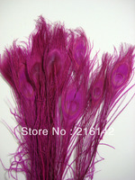 top quality peacock feather,200pcs/lot length 10-12INCH(25-30cm) ,beautiful PINK peacock feather