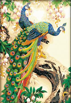 Pavão decorativo 60 da pintura da pintura a óleo digital de Diy 90