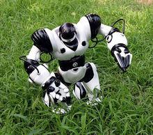 wholesale rc robot