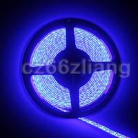 3528 Non Waterproof 5M 600Leds IP63 Bule SMD LED Strip 120LEDS M 16 4ft 500CM