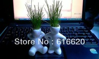 Mini Novel Bonsai Grass Doll Hair Man Plant Rely