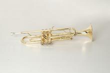 trumpet promotion