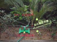 With garden, gardening lawn green, three-arm + base, 360 degreesautomatic rotation sprayers, automatic sprinkler