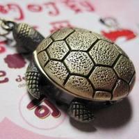 Free shipping Best Tortoise Pocket Watch