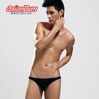 Asianbum panties male trigonometric viscose ultra-thin low-waist sexy fashion triangle panties