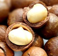Free shipping Hawaiian fruit wholesale nuts snacks trillion guitar brand premium South Africa creamy macadamia nuts