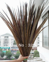 30pcs!!! beautiful natural pheasant tail feathers 60cm-70cm