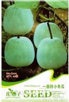 20pcs/lot hot selling winter melon seeds for DIY home garden/garden plant seeds/bonsai seeds