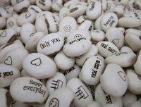 Free Shipping Magic Growing Message Beans Seeds White English Magic Bean Bonsai Green Home Decoration